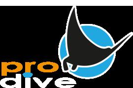 logo Prodive